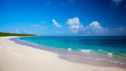 Siesta Key Sugar sand beach