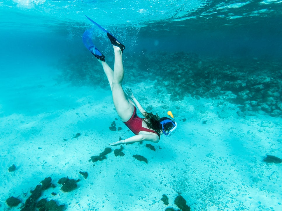 swimmer snorkeling under water