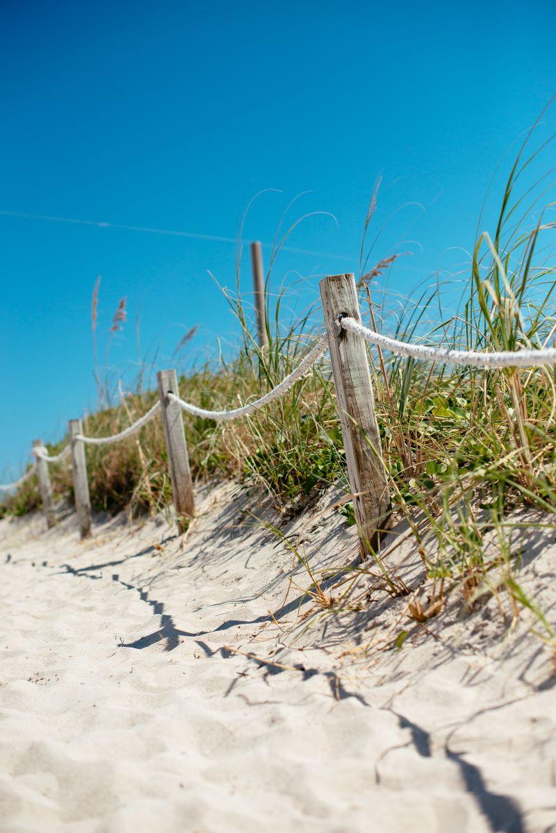 white sand beach path
