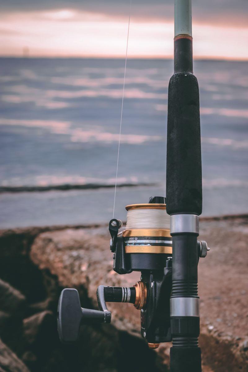 fishing pole in siesta key